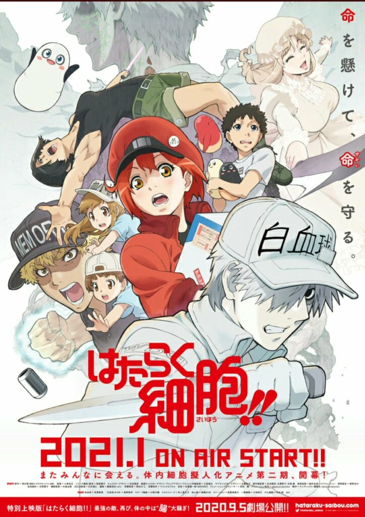 Cells At Work!, Season 2