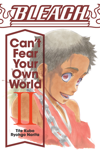 Bleach: Can't Fear Your Own World, Volume 2 (Novel)